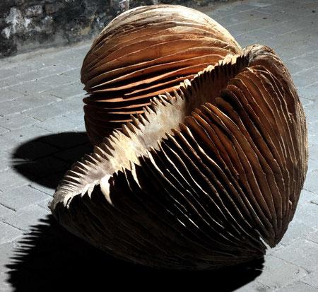 willow - saule 70 cm ©Isabelle Dethier