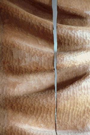 pear wood- poirier ©Isabelle Dethier
