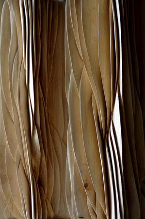 popolar wood - peuplier 1m08cm +50 cm stand x30cmx30cm wide ©isabelle dethier