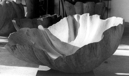 Lime wood tilleul 85 cm ©Isabelle Dethier
