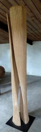 sycomore - erable 1m90cm ©Isabelle Dethier