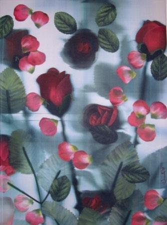 Titolo : Gaio laghetto fiorito  Dimensioni : 80 x 60  tecnica: scanner puro – olio su canvas  anno . 2007