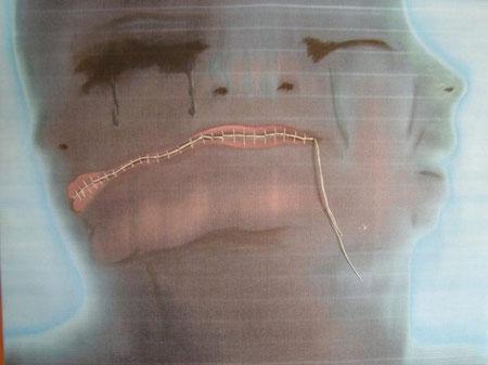 Titolo : muta  Dimensioni : 30 x 40  tecnica: scanner puro – olio su canvas  anno . 2008