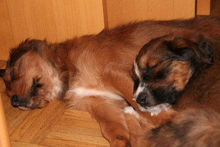 Lenno-Peter mit Leotie-Mia