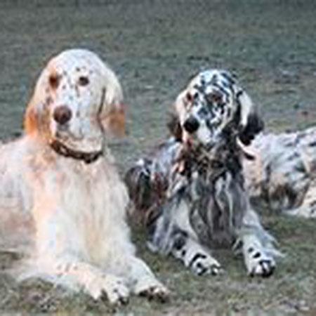 Papa John mit Aragon und Bijou