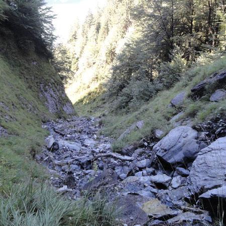 Einzuggebiet Trachtbach