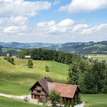 Almhochzeit: Ein unvergleichliches Panorama bietet die Almhochzeit. Die Liebe zu den Bergen und ein rustikales Ambiente erzeugen eine ganz einzigartige Atmosphäre. Eine Mischung aus Vintage, Boho und Natur bieten eine Vielzahl an Gestaltungsmöglichkeiten.