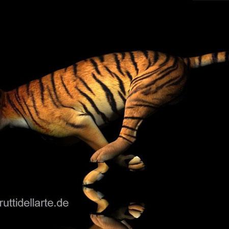 Tiger, run