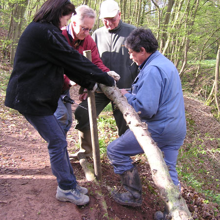 Protection sentier bois de Maligny