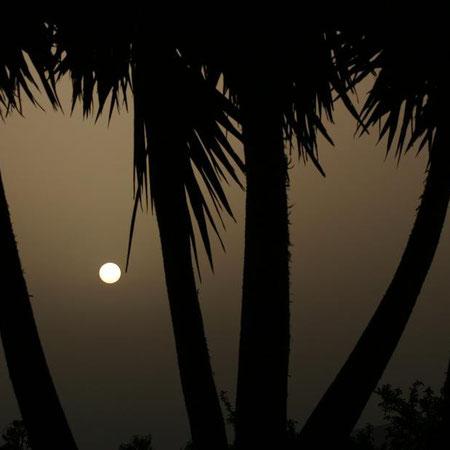 Puesta de Sol desde La Palma 2010