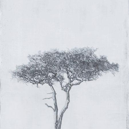 NOUVEAUTE ! Liz Bono - Consciencia Interior - 100 cm x 50 cm - Techniques mixtes sur toile - Prix sur demande