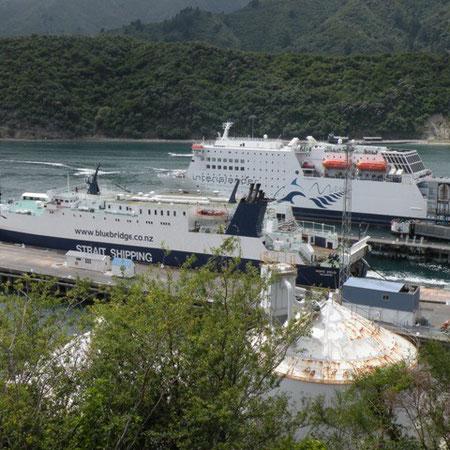 Fähre von Picton nach Wellington knapp 4 Std. Überfahrt