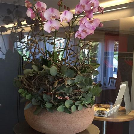 Orchideenschale im Restaurant zum Löwen Messen