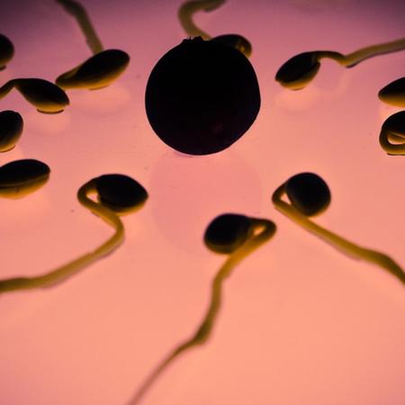 Yannick Guennou thérapeute Carcassonne cycle menstruel symptothermie contraception naturelle ovulation PEAT