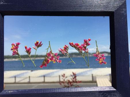 押し花フレームと海と空
