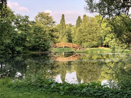 Johannapark Leipzig, mit Wasser und Brücke