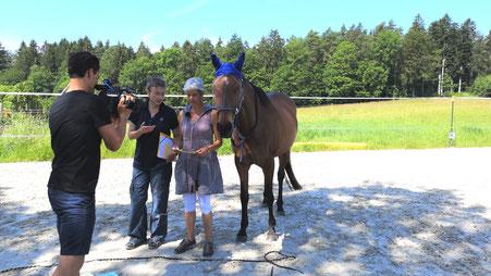Mit dem Pferd als Co-Coach zum Traumjob - Tandem 50 plus Mentorin Monica Giedemann mit Annemarie Müller in der Reportage von Tele M1