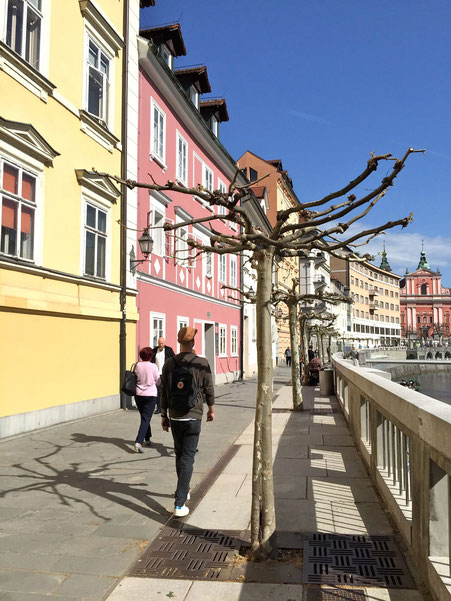 Promenade entlang des Flusses / esplanade alongside the river