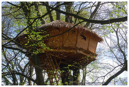 Cabane dans les arbres à 14 m : accès passerelle puis échelle à crinoline d'une douzaine de barreaux.