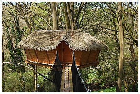 Normandie, La Chaussée, cabane dans les arbres à 8 m Les Faines : accès passerelle de 15 m, sécurisée par des filets.