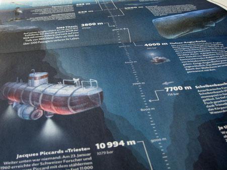 Tiefsee-Infografik © Michael Stünzi