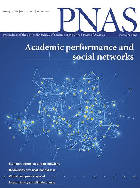 Die Visualisierung auf dem Cover vom PNAS © Michael Stünzi