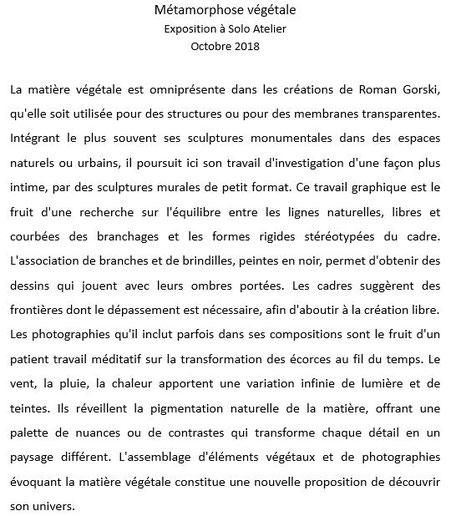 2018 - Solo atelier, Saint-Leu-la-forêt - Roman Gorski