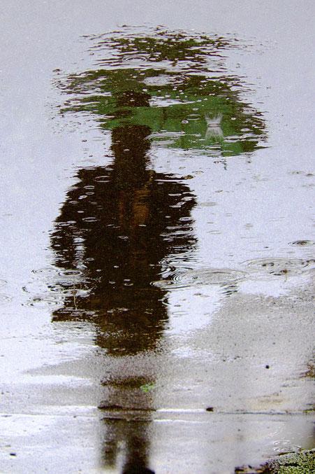 Peter G. - Foto 3 - Grün eilt