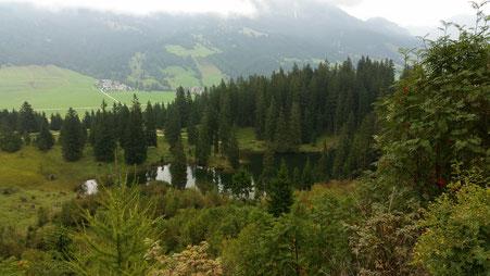 Blick auf den Höfer See