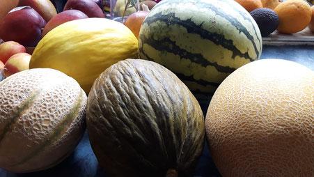 Ob Sie genügend Melonen essen, kann entscheidend für Ihre Gesundheit sein.