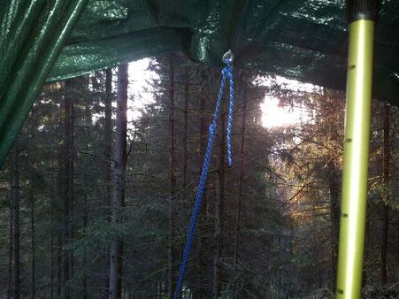 Morgens - erster Blick aus dem Zelt