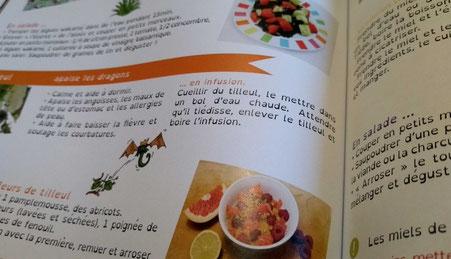 Aperçu de recettes et de l'utilisation de plantes sur une page de l'album jeunesse Le rhume de Liharina la dragonette