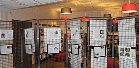Exposition de l'illustratrice Cloé Perrotin à la médiathèque de Donzy,  illustrations et panneaux pour expliquer la naissance d'un livre jeunesse