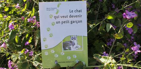Le livre le chat qui veut devenir un petit garçon au milieu de la monnaie du pape