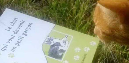 Le chat léo vous présente le roman tout public Le chat qui veut devenir un petit garçon paru chez Benjulice Editions