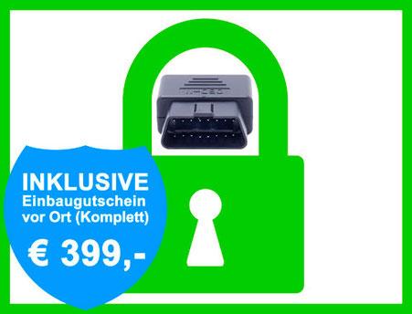 OBD-Schutz / Diebstahlschutz