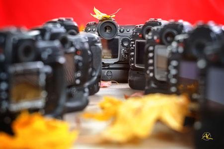 vl.: Nikon D2x, D7000, D3, D200, Fuji S5, D300, D3s und D90