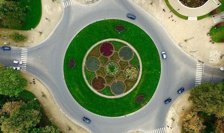 Orthobild Grünfläche