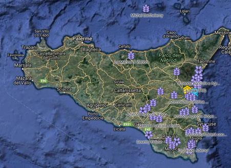 Mappa Pollaio delle Galline Felici