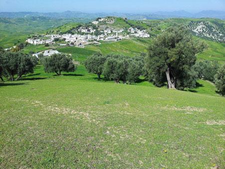~ Bild: Taounate, Rif-Gebirge, Marokko ~