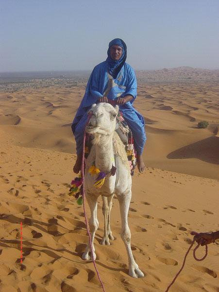 ~ Bild: Said Hejbane - Sahara ~