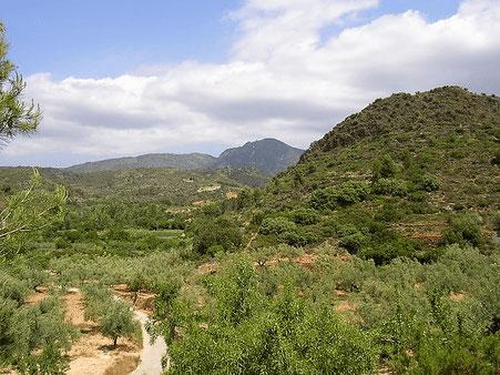 Las hoces del Gabriel en la Comunidad Valenciana  fue declarado Parque Natural en 2005.