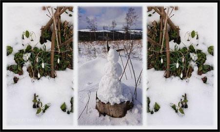 Erzgebirge Schwartenberg Schnee