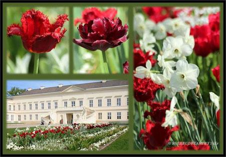 Hannover Herrenhausen Großer Garten