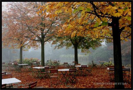 Herbst im Vogelpark Walsrode