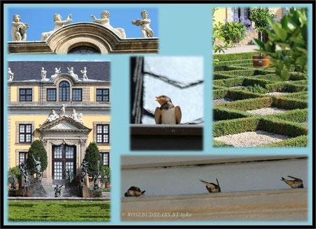 Hannover Herrenhausen Großer Garten Galerie Orangenparterre