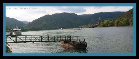 der Rhein bei Boppard - Schiffstour gefällig?
