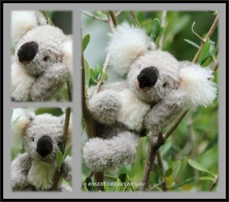 Koala Design Unkel-Schäufelin