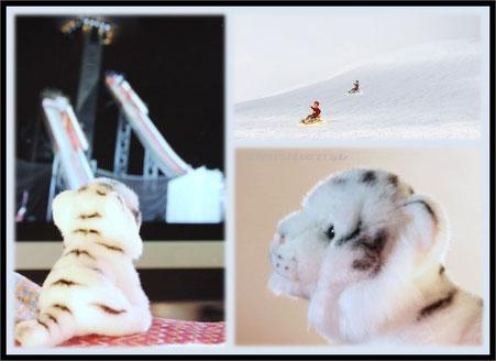 Mein kleiner weißer Tiger ist sehr stolz, das Symboltier der Winterspiele zu sein.