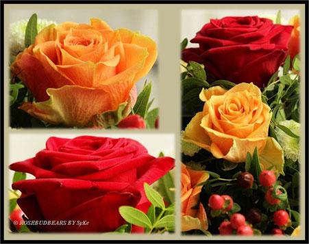 Rosen Blumenstrauß